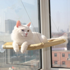 Cama de gato para janela