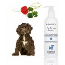 Shampoo seco para cães