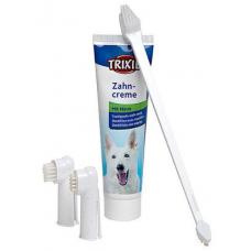 Pasta de dentes com escova