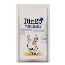 Dingo Fish & Daily