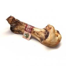 Ossos de avestruz DINO BONE