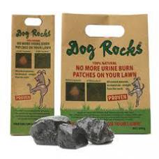 Dog Rocks - relva sem manchas